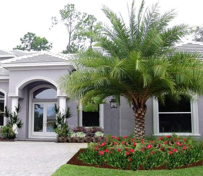 Modern and Contemporary Front Yard Landscaping Ideas 9