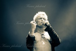 billy-idol-srf-14-8594(1)