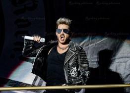 Queen, Adam Lambert srf 16-3513
