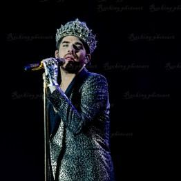 Queen, Adam Lambert srf 16-3724