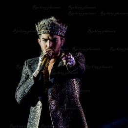 Queen, Adam Lambert srf 16-3738
