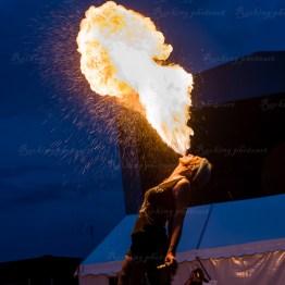 festivallife cphl 16-4751