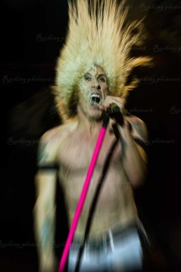 Twisted Sister 1