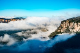 Early morning in Blue Mountains