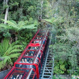Blue Mountains, Scenic railway. Length: 415 m, vertical drop: 206 m, steepest inline: 52 degrees, length of natural tunnel: 80 m.