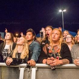 festivallife rockit 17-600316