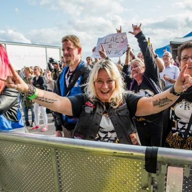 festivallife rockit 17-8684