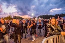 festivallife rockit 17-9011