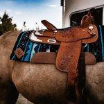 Black Blue Mojave Impact Gel 36x34 Saddle Pads