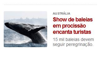 Baleias muito religiosas... Amém