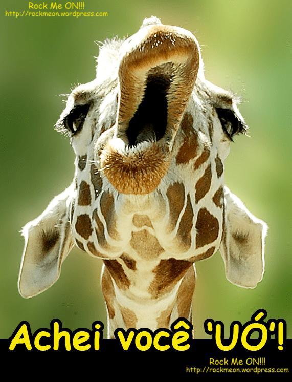 Respeito a Opinião das Girafas.