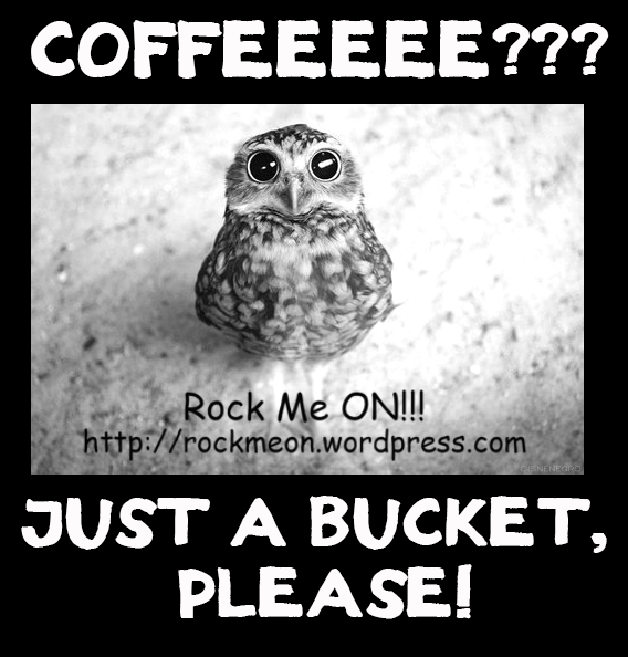 Hey, Owl! Wanna a Coffe?