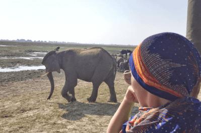 Malawi, Zambia & Botswana Tour 11