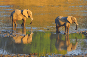 Malawi, Zambia & Botswana Small Group Tour