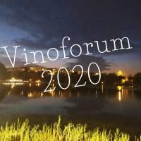 Recensione di Vinoforum 2020 - Roma