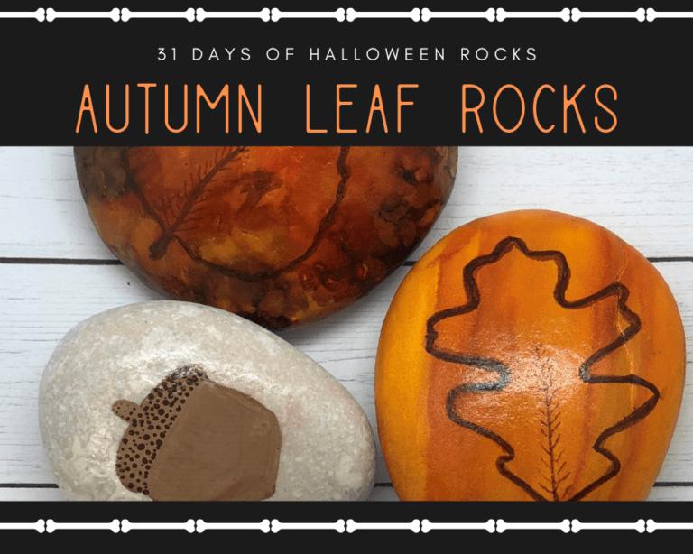 fall leaf rocks