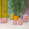 Image of a range of Flamingo design gifts