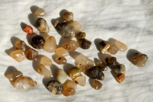 types of beach stones agates rockhounding collecting rocks on ocean beaches