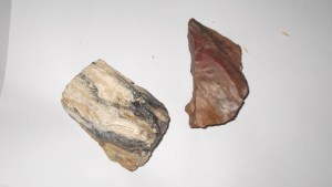 types of beach stones petrified wood rockhounding collecting rocks on ocean beaches
