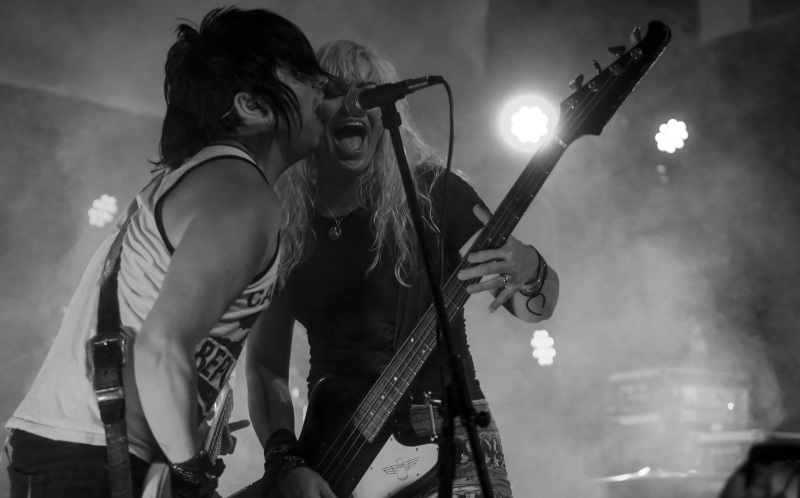 The Dollyrots Duo Live Photo Microphone
