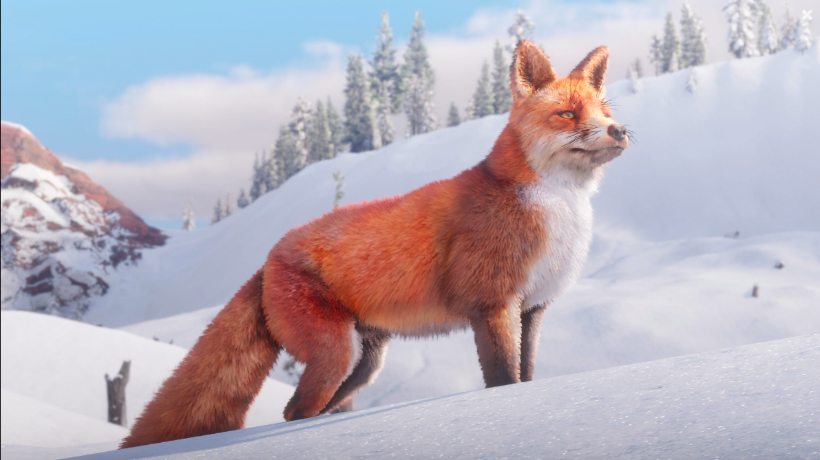 Red Dead Redemption II - Renard