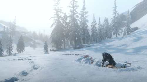 Red Dead Redemption II Chasse dans la Neige