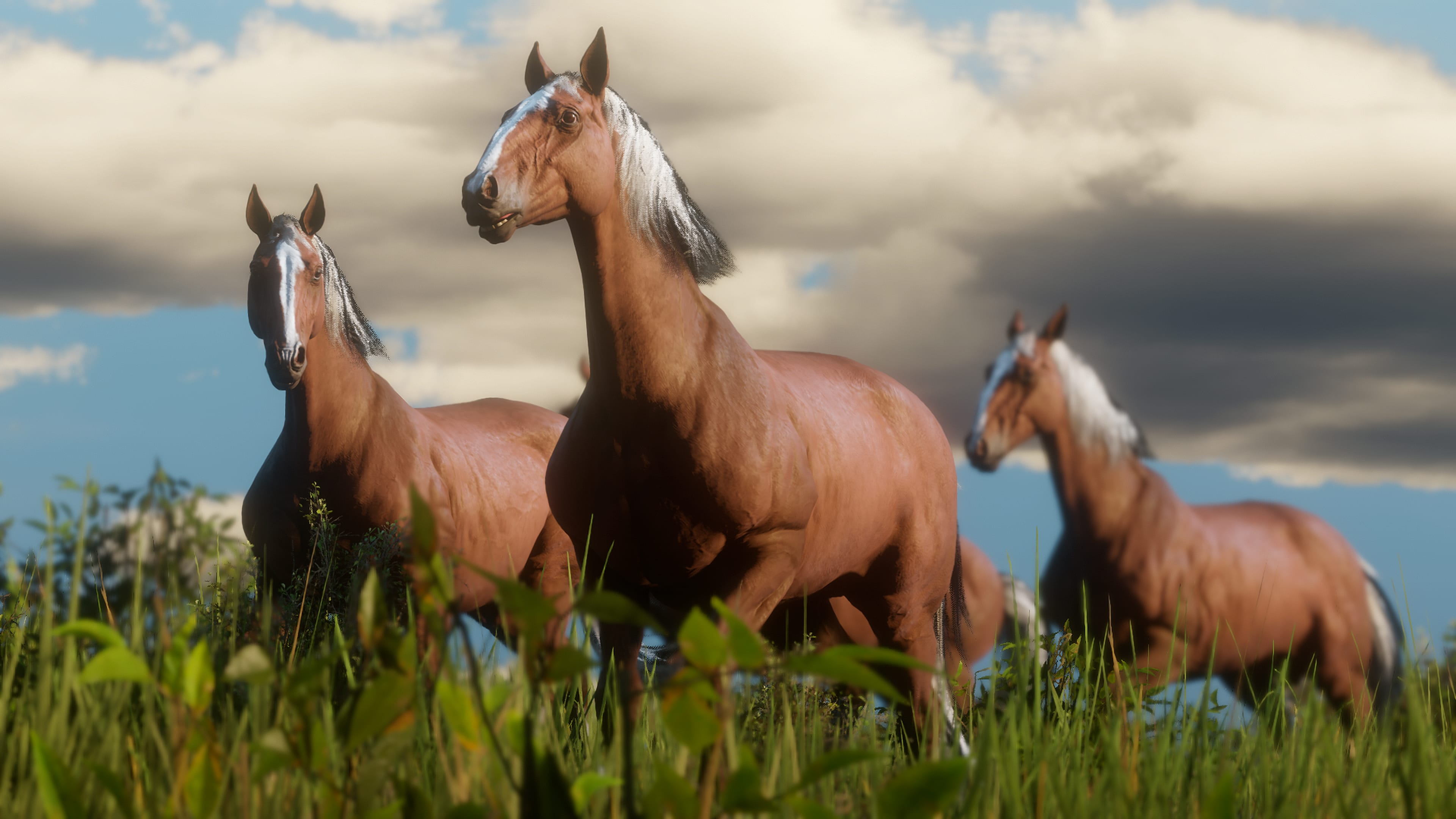 Red Dead Redemption II Chevaux