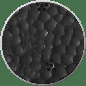 SQLAB - 6OX Infinergy®