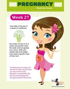 weeks pregnant also you  re how far along am  baby due date rh rockthebabybump