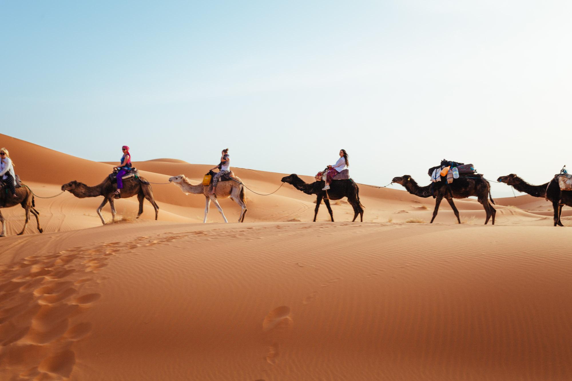 Dune, desert