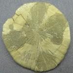 PyriteSun3-7-1