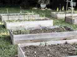 DIY Raised Cedar Vegetable Garden Beds