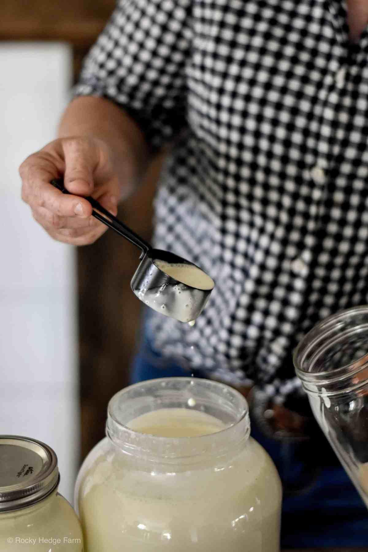 separating-cream-from-raw-milk