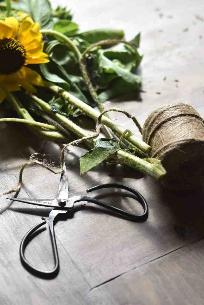Growing Sunflowers to Dry
