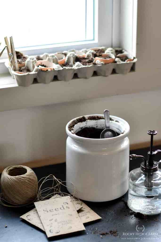 Starting Seeds Indoor in Egg Shell Cartons