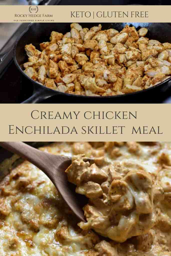 Quick and Easy Keto Chicken Enchilada