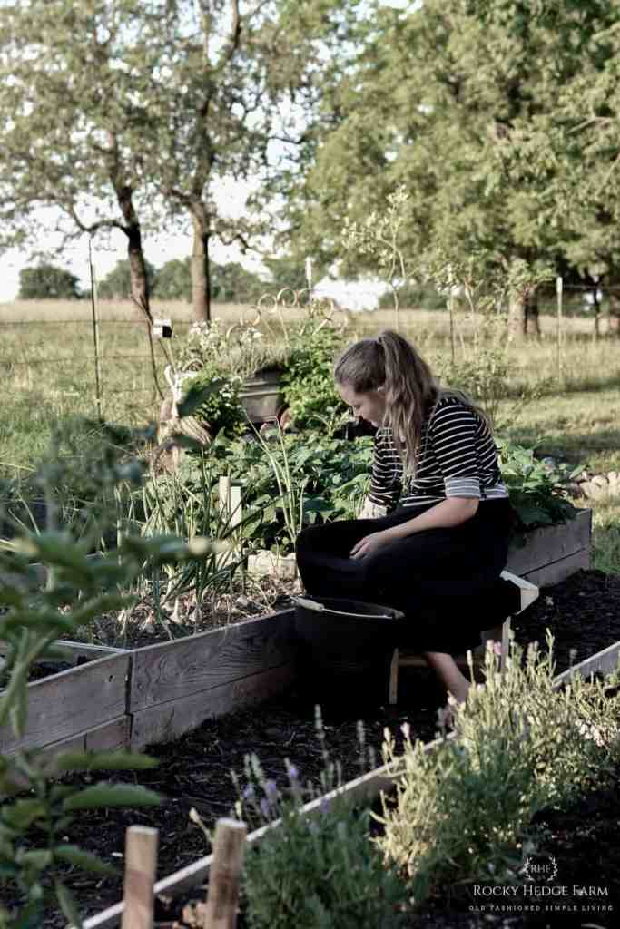 Working in the Summer Garden