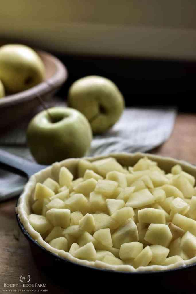 Field Company Skillet Apple Pie