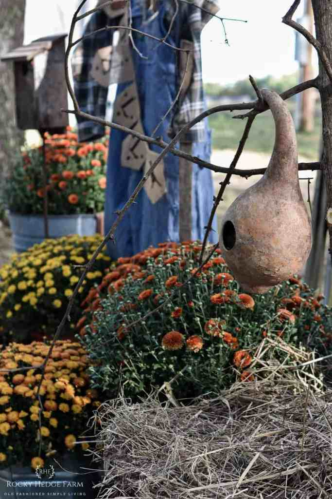 Fall Bird House Gourd