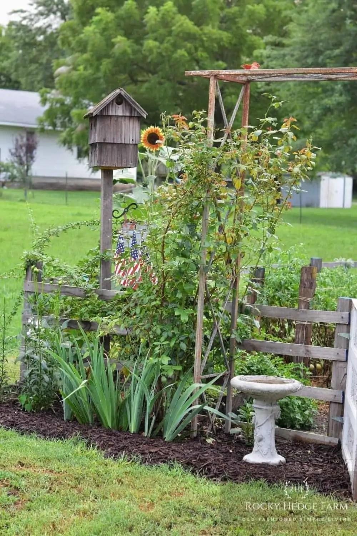 an aesthetically pretty garden