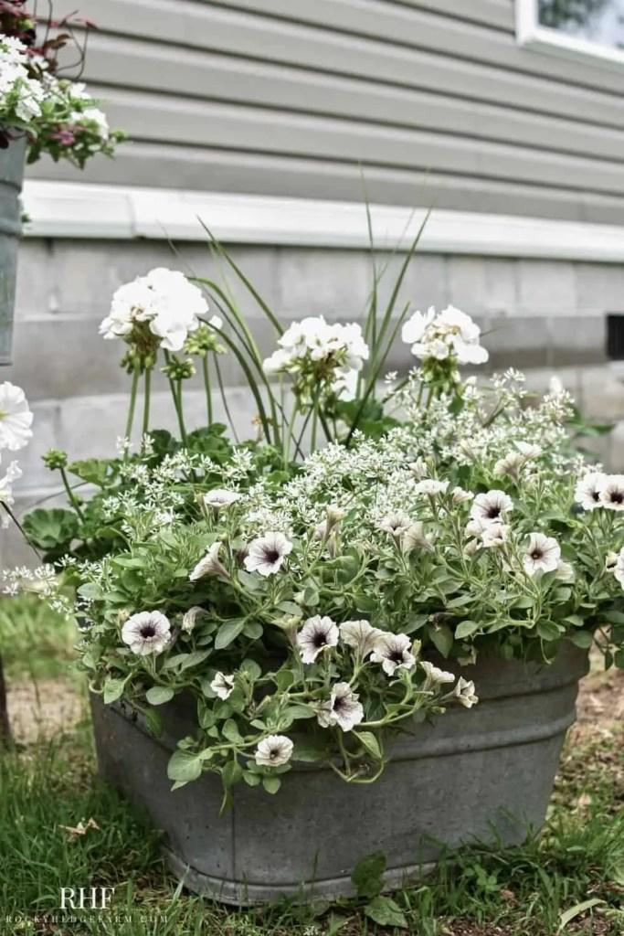 DIY Wash Tub Planter