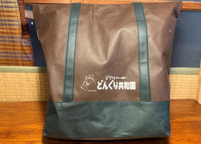 日本 2019 年龍貓橡子共和國福袋 開箱!琪琪的毛毯、龍貓毛巾、午餐盒等 1