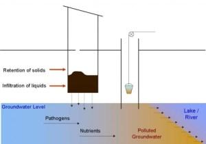 Nutrient Pathogen Studies
