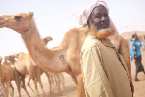 Can I travel to Somaliland?