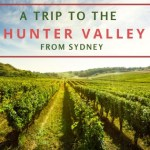 Reasons for a trip to the Hunter Valley