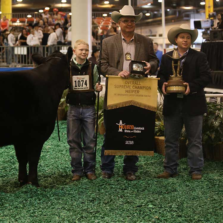 Continental Breeds Rose To The Top In The 2018 Houston
