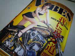 VIBES_Vol_191_1.jpg