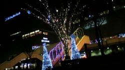 2009.12.25.JPG