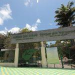 Parque_das_Dunas_-_Foto_Rayane_Mainara_1_Custom