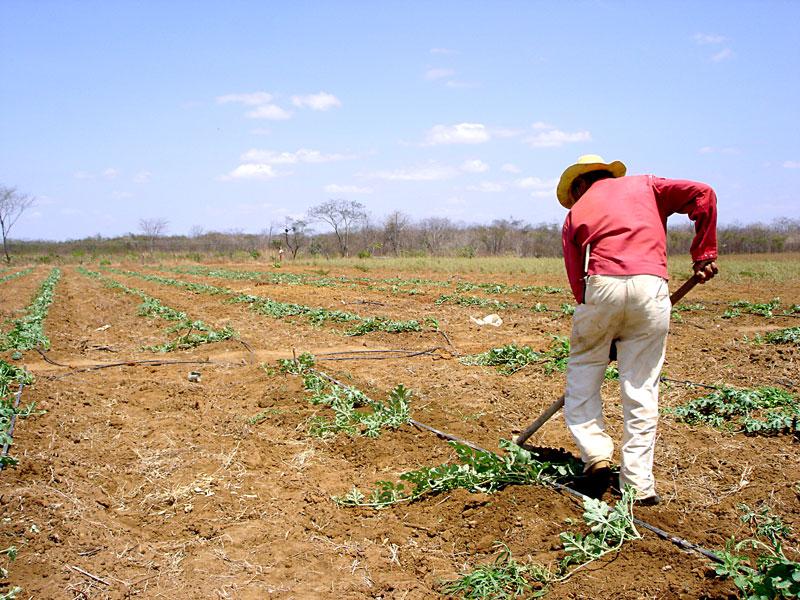 Genrio-Pereira-dos-Santos-Agricultor-06-AG-LT1